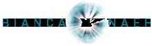 Bianca Naef Logo